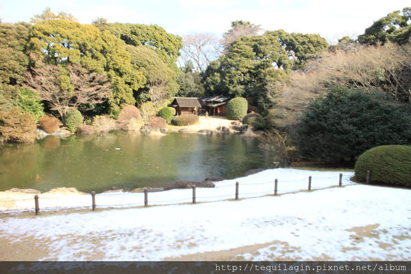 [ 一個人的東京 ] Day4–東京國立博物館,邂逅令人驚豔的雪景(圖多)