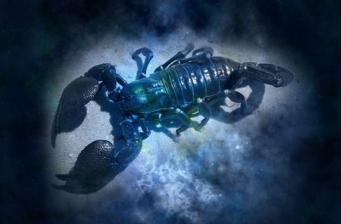 當精油遇上星座–巨蟹座必須知道的精油秘密