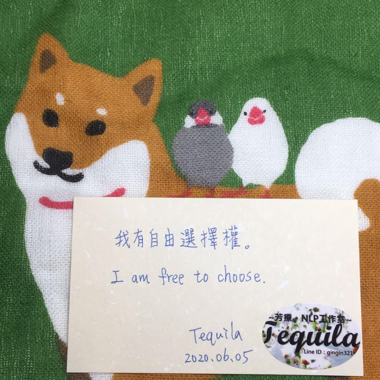 Tequila心靈小語