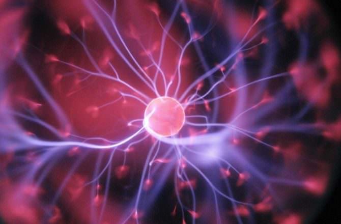 [ 心靈芳療 ] 保養大腦的五種方法,從身體到心靈全方位提升,打造敏捷睿智有彈性的大腦